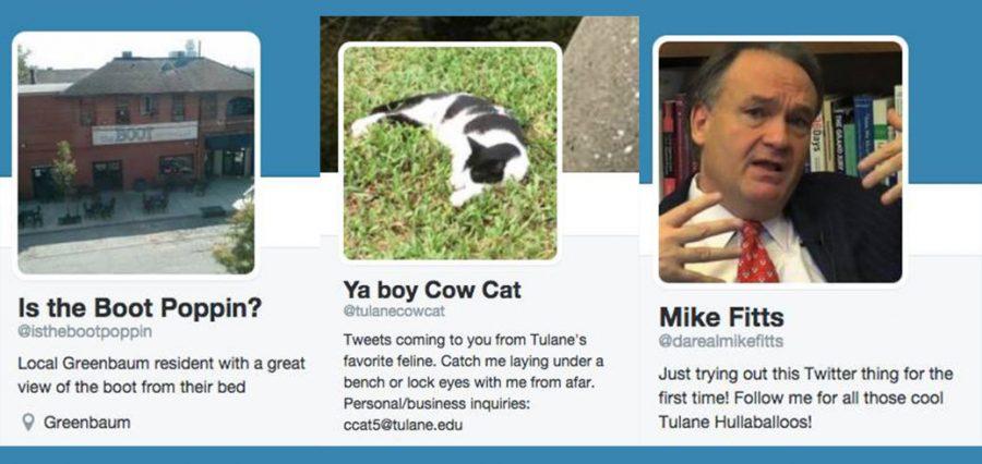 Tulanes Twitter personalities shine