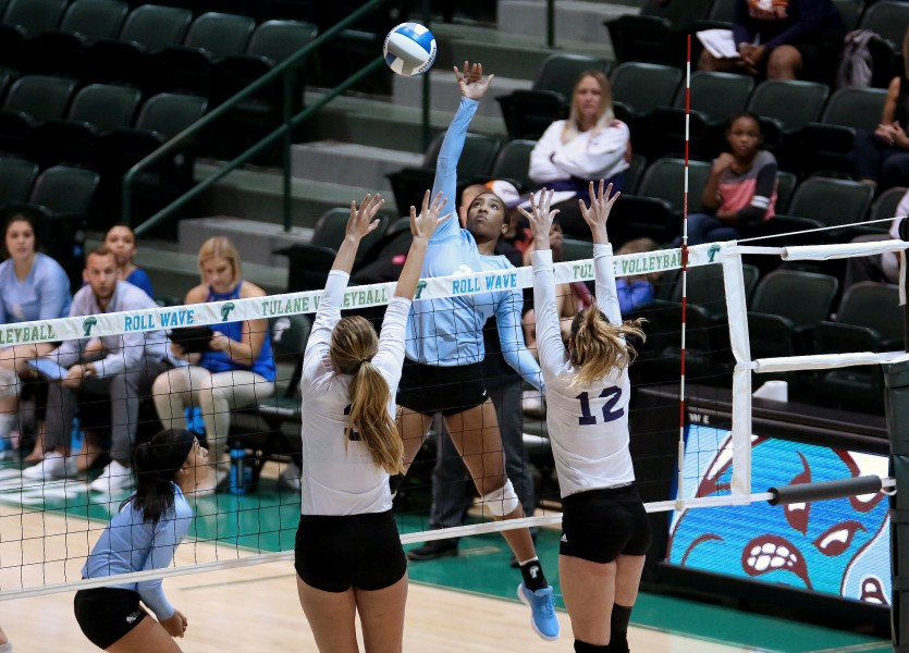Freshman Kristen Thompson (24) prepares to spike the ball in a match at the Tulane Invitational. Tulane won the tournament, bringing its season record to 11-12, the best record in the American Athletic Conference prior to the beginning of conference play this Friday.