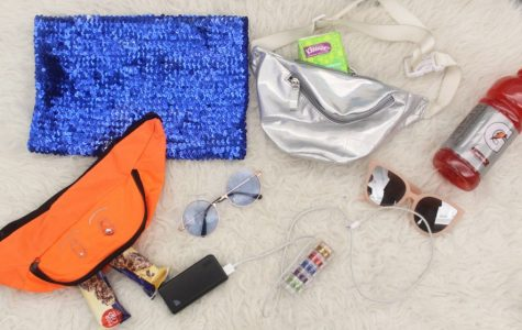 What's in our fanny pack? A guide to Mardi Gras must-haves