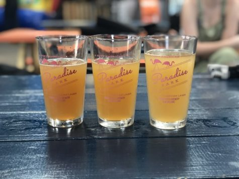 The Hullabaloo checked out three local breweries: Urban South, Port Orleans, and NOLA Brewing Co. to enjoy a sunny Saturday and compare each locations' house-made beers.