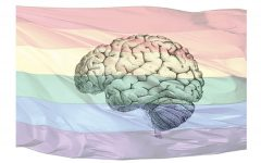 Tulane Medical School's controversial history of gay conversion therapy
