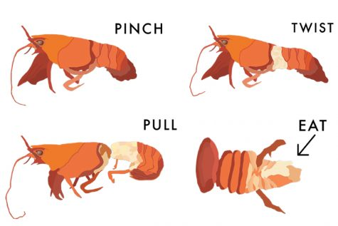 The Hullabaloo's crawfish crash-course