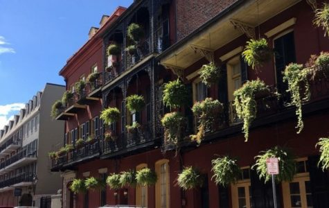 New Orleans classics for the New Orleans newbies