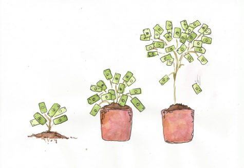 Students can plant financial seeds now which will, over time, grow into prosperous financial portfolios.