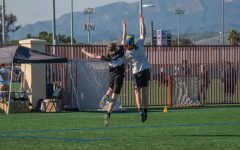Club ultimate frisbee team set to soar