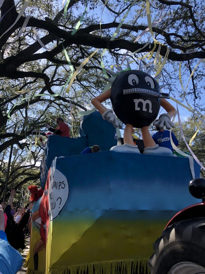 Student perspectives of Mardi Gras celebrations