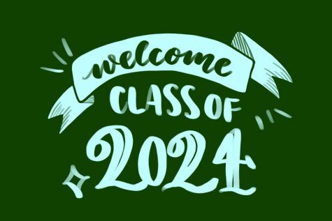 Tulane Admits 11% of Applicants for the Class of 2024