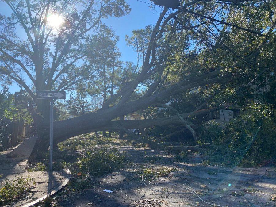 Hurricane Zeta impacts Tulane, New Orleans