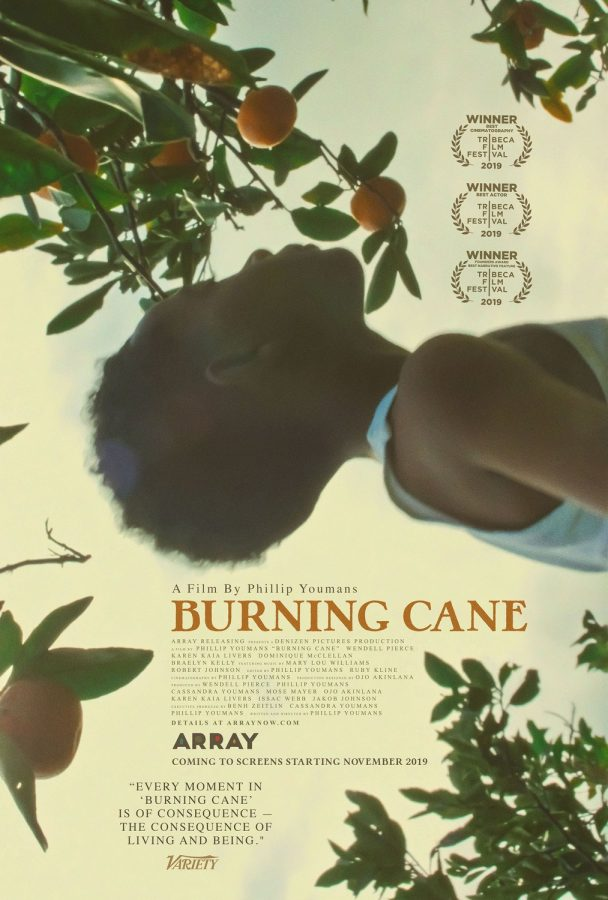 movie poster for phillip youman, a black director's, first feature length film burning cane which has won many awards