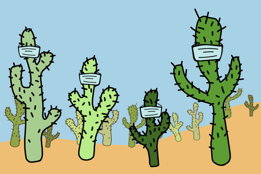 CACTUS organizations continue to take action in the community, despite pandemic restrictions.