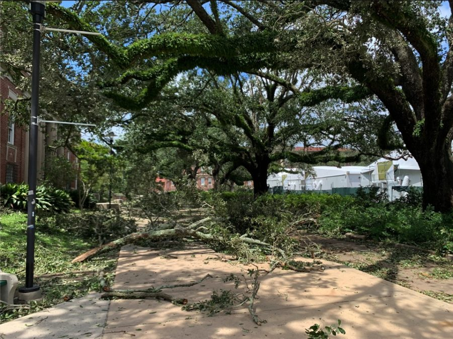 Effects of Hurricane Ida can be seen by Newcomb Quad.
